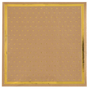 Serviettes - Passe partout - lot de 20 - Kraft