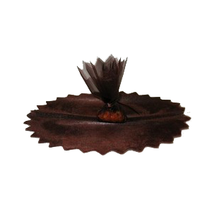 Tulles à dragées - lot de 10